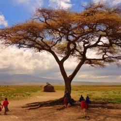 タンザニア(マサイ族)