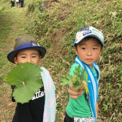 """宮城県石巻の子供達と""""葉っぱスタンプ"""""""